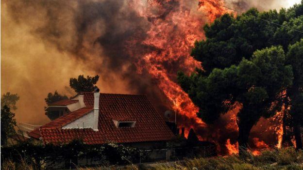 Висловлюємо співчуття постраждалим від лісових пожеж в Греції