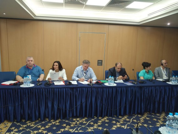 """Workshop on """"Exchange of experience on issues of protection of the rights of national minorities in the member states of the Council of Europe"""""""